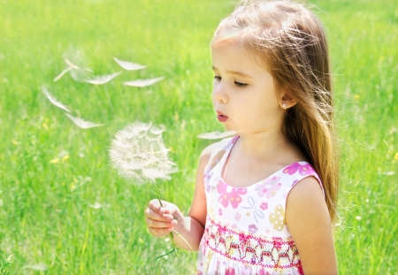 Beautiful little girl blowing dandelion on green meadow photo