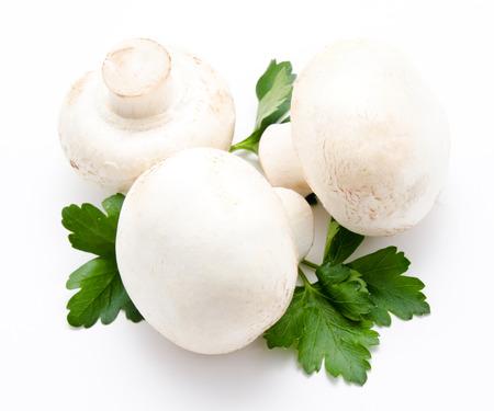 agaricus: Champignon mushroom white agaricus with parsley isolated Stock Photo