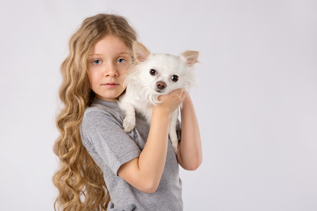 Little girl with white chihuahua dog isolated on white background. Kids Pet Friendship