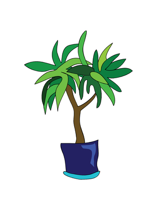 indoor bud: plant with green leaves in blue flowerpot Illustration