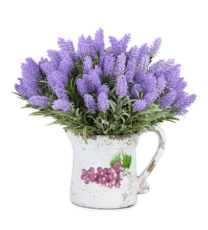 blue violet bright: Jug with wild flowers isolated on white