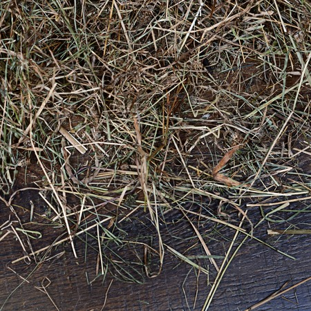 Hay on a wooden background close up photo
