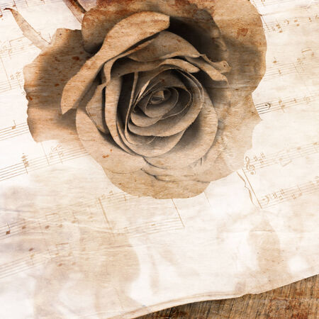 The rose on notebooks with musical notes Archivio Fotografico