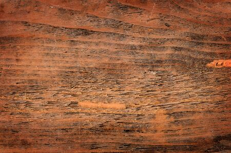 aged wood: The wooden with cracks close up
