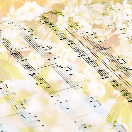 Music sheet against flowering tree- art background photo