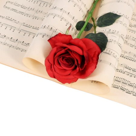 single songs: The rose on notebooks with musical notes Stock Photo