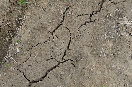 split up: The dried-up dirt with cracks close up Stock Photo