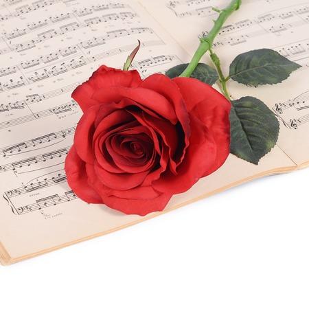 letras musicales: Se levantó en cuadernos con notas musicales