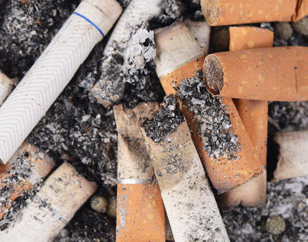 the ashes: Cigarette butts amid the ashes close up