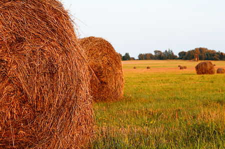 haystack: The haystack against the sky. Haymaking time.