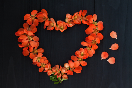 valentin day: Flower heart on wooden background. Valentin day or wedding concept Stock Photo