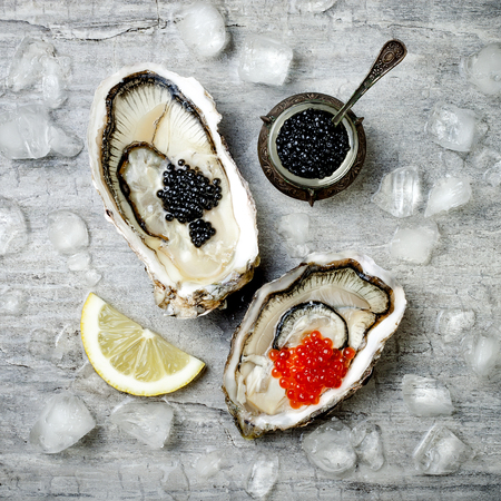 Opened oysters with red salmon and black sturgeon caviar and lemon on ice on grey concrete background. Top view, flat lay, copy space