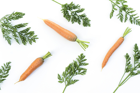 haulm: Composition of a carrots and carrot tops on white background