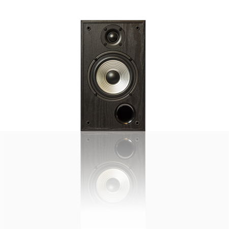 Image of professional audio speakers in a wooden case. Photo isolated on white background with reflection on a horizontal surface. There is an empty seat for your text. Banco de Imagens