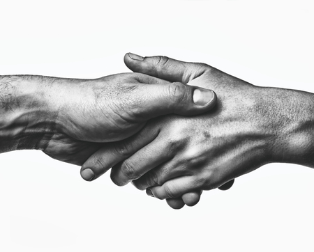 A firm handshake between the two partners. Black and white image on white  background.