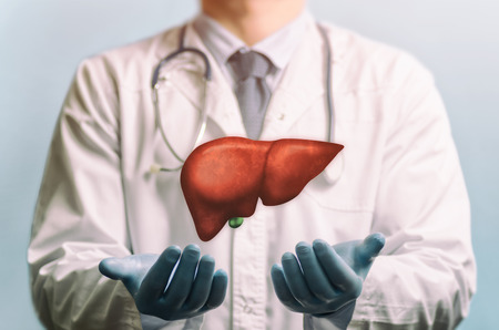 Image of a doctor in a white coat and liver above his hands. Concept of healthy liver and donation. Standard-Bild - 120315159