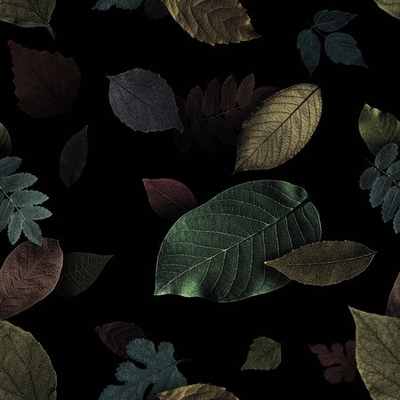 Seamless pattern from beautiful exotic leaves on black background.