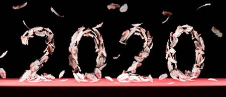 The new 2020 is created by falling feathers on black background with falling feathers. New 2020 year! Image