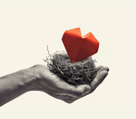 Bird nest with red heart in woman hand. Image on isolated toned background. Concept of love,  marital bliss. Black and white image. Zdjęcie Seryjne