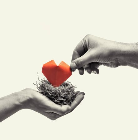 Bird nest with red heart in woman and man hands. Image on isolated toned background. Concept of love, marital bliss. Black and white image.