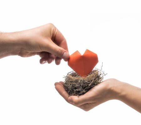 Bird nest with red heart in woman and man hands. Image on isolated white background. Concept of love, marital bliss. Image. Stok Fotoğraf