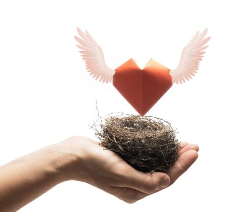 Bird nest with red heart in woman hand. Image on isolated white background. Concept of love,  marital bliss. Image. Banco de Imagens