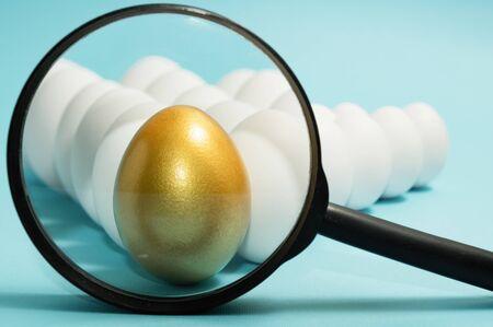 Búsqueda de personas únicas. Gestión del talento. Un huevo de oro con lupa entre huevos blancos sobre fondo azul.