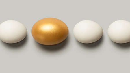 Concept of individuality, exclusivity, better choice. One golden egg among white eggs. Top view.