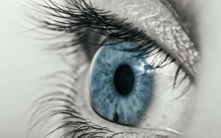 Human eye with blue pupil. Black and white. Close-up. Фото со стока