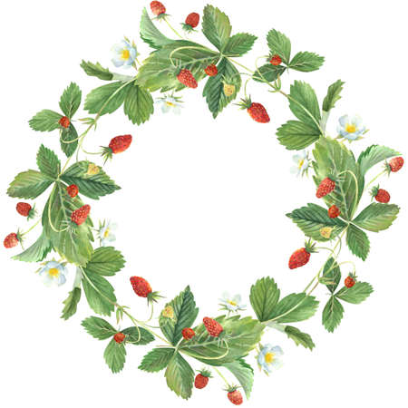 Watercolor wreath of wild strawberry leaves, berries and flowers