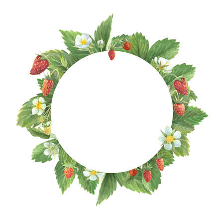 Watercolor round frame of wild strawberry leaves, flowers and berries