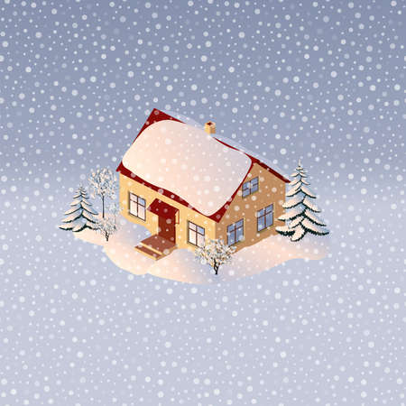 The house is surrounded by trees in winter 3D
