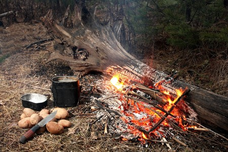 Fire in wood. Near to fire a kettle, a knife and a potato. photo