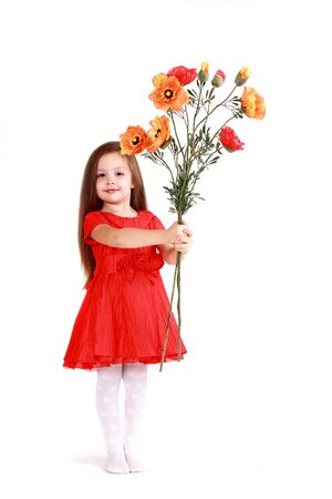 The little girl in brightly red dress on a white background has control over a bouquet of poppies  Stock Photo