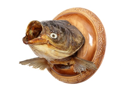 Dried head of a silver carp on a round wooden board Stock Photo