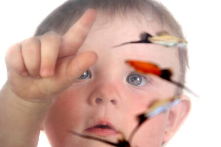 the little blue-eyed girl plays with small fishes in an aquarium. Stock Photo