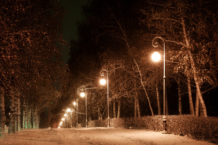 electric avenue: city avenue in the winter evening