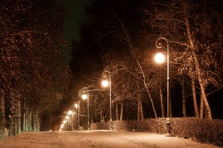 winter evening: city avenue in the winter evening