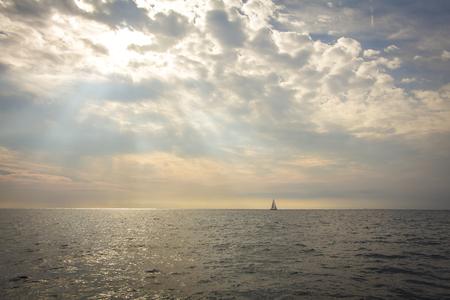 The sea in the sun