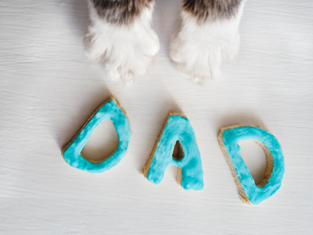 Lovely cats paws and the word DAD