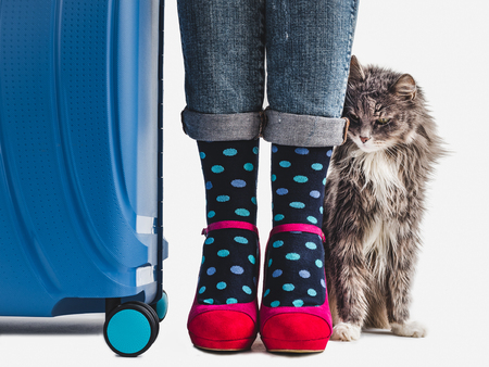 Stylish suitcase, women's legs, bright, multicolored socks, pink shoes and gentle kitten on a white, isolated background. Close-up. Concept of style, beauty and travel
