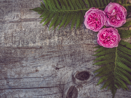 Beautiful bouquet of blooming peonies lying on unpainted, frayed boards. Place for your inscription. Top view, close-up. Greetings from loved ones, family, friends and colleagues