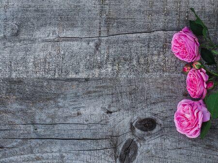 Mooi boeket van bloeiende pioenrozen en varenbladeren die op ongeverfde planken liggen. Plaats voor uw inscriptie. Bovenaanzicht, close-up. Proficiat aan dierbaren, familie, familieleden, vrienden, collega's