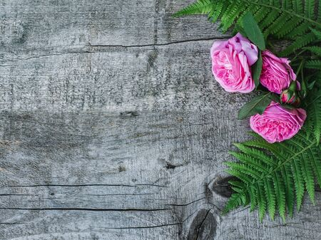 Beautiful bouquet of blooming peonies and fern leaves lying on unpainted boards. Place for your inscription. Top view, close-up. Congratulations to loved ones, family, relatives, friends, colleagues