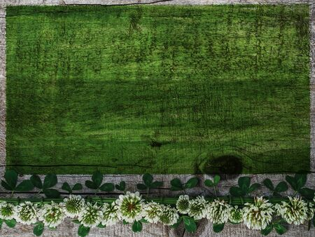 Beautiful, bright flowers lying on a green, wooden table. View from above, close-up Reklamní fotografie