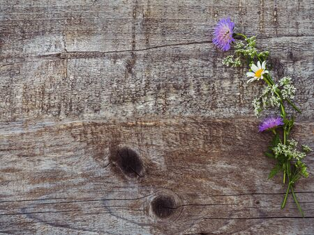 Beautiful, bright wildflowers lying on a white, wooden table. View from above, close-up Banque d'images