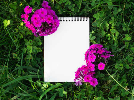 Blank page of the Notebook lying on a clover