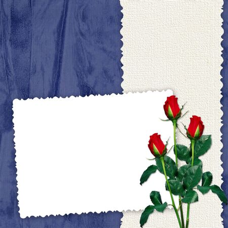 White frame with roses on the dark blue background  photo