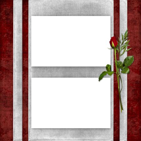 Card for the holiday with red rose on the abstract background photo