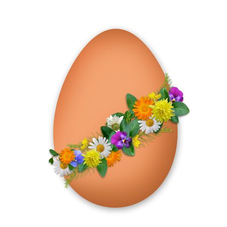 testicle: Easter decorated egg with flowers and plants on the white background